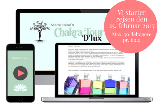 Chakratour d´lux starter 25. februar 2017